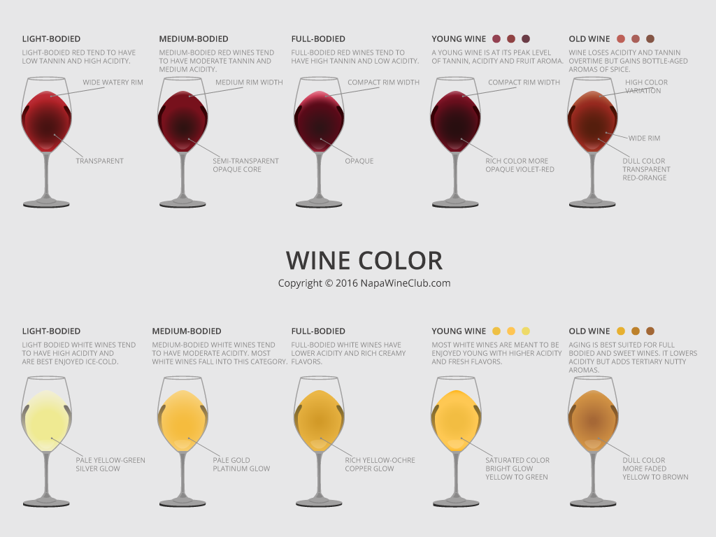 Infographics_3(WineColor)